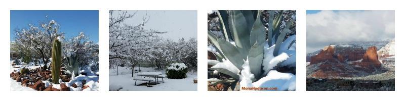 2015 Arizona Snow Collage